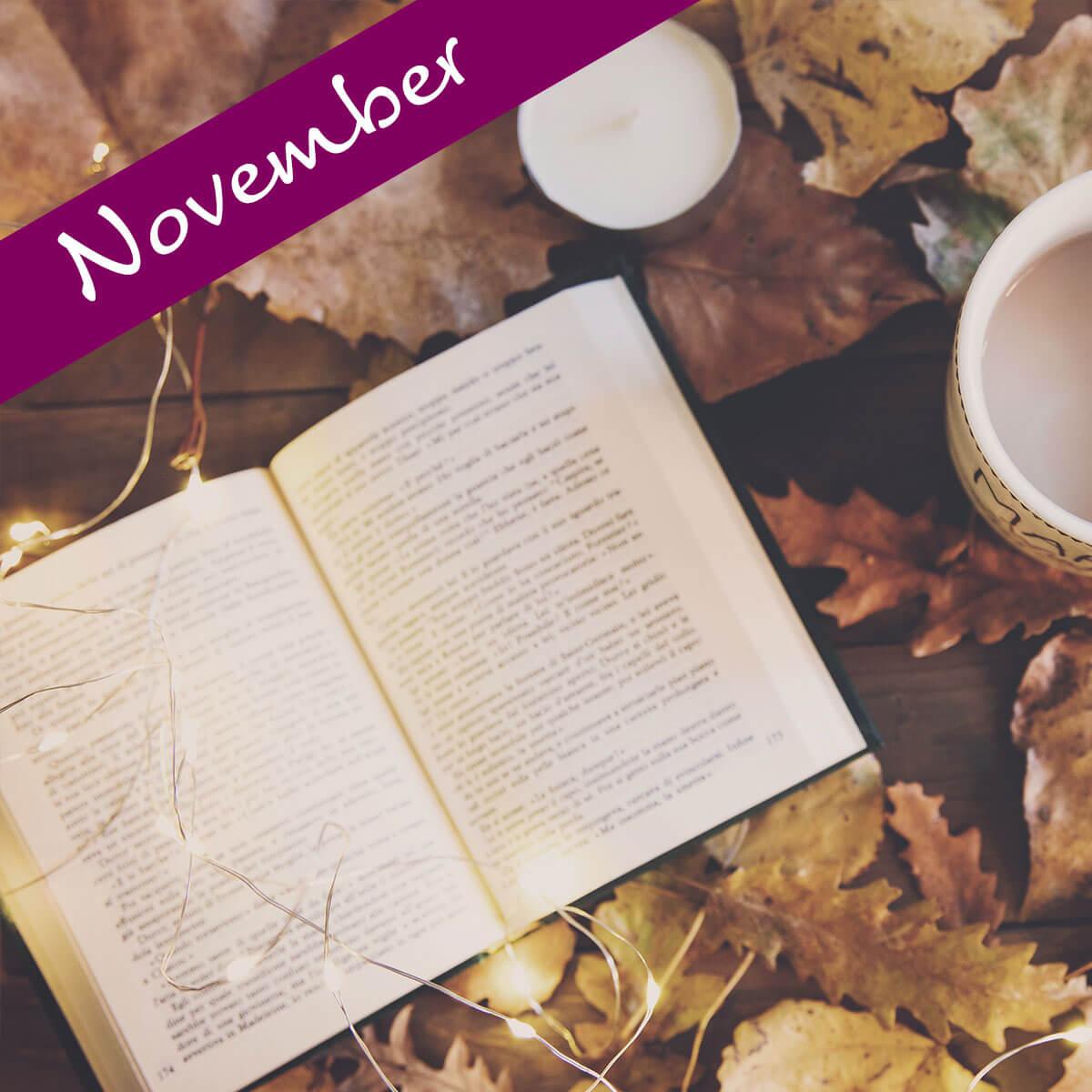 Disse seks bøger skal du læse i november