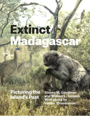 Extinct Madagascar Steven M. Goodman, William L. (State University of New York at Stony Brook Jungers 9780226143972