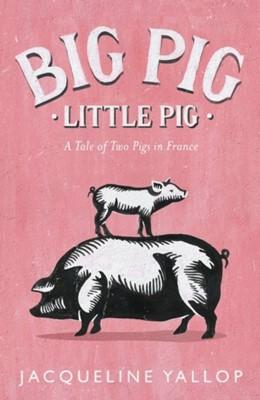 Big Pig, Little Pig Jacqueline Yallop 9780241261415