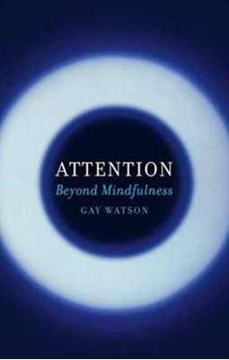 Attention Gay Watson 9781780237459