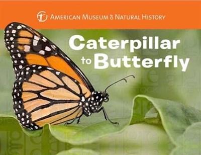 Caterpillar to Butterfly Melissa Stewart 9781454914068