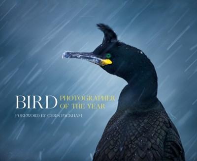 Bird Photographer of the Year Bird Photographer of the Year 9780008175238