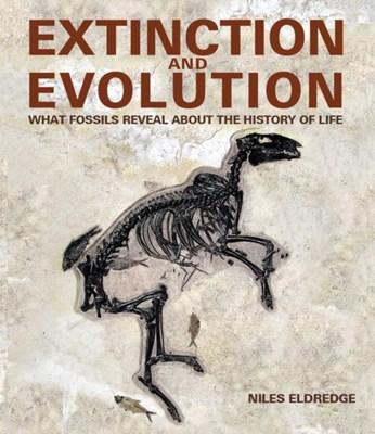 Extinction and Evolution Niles Eldredge 9781770853591