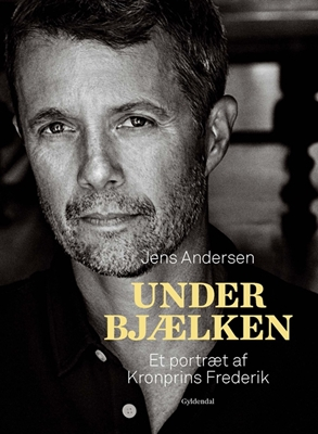 Under bjælken Jens Andersen 9788702214369