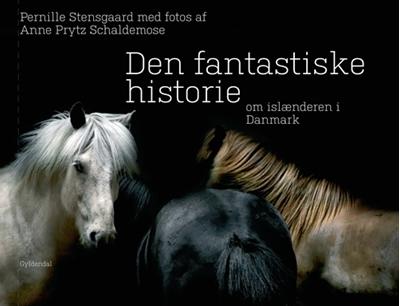 Den fantastiske historie om islænderen i Danmark Pernille Stensgaard 9788702093353