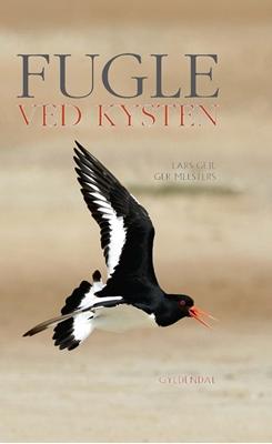 Fugle ved kysten Lars Gejl, Ger Meesters 9788702165456