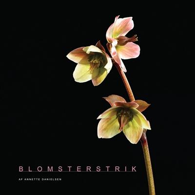Blomsterstrik Annette Danielsen 9788793252134