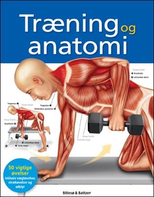 Træning og anatomi Ken Ashwell 9788778423191