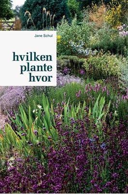 Hvilken plante hvor Jane Schul 9788740017939