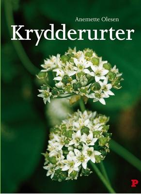 Krydderurter Anemette Olesen 9788756793537
