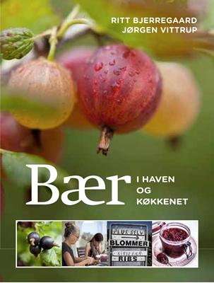 Bær i haven og køkkenet Jørgen Vittrup, Ritt Bjerregaard 9788740008906