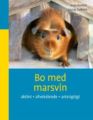 Marsvin online dating