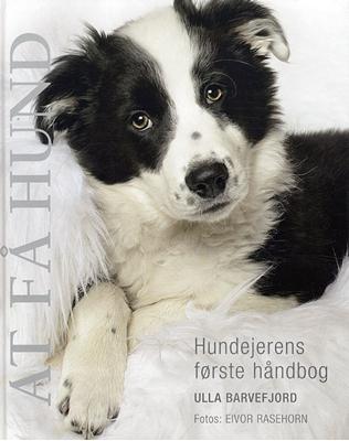 At få hund Ulla Barvefjord 9788778575258