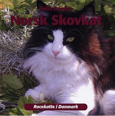 Norsk skovkat Felis Danica, Norsk Skovkattering, Danmark 9788778574190