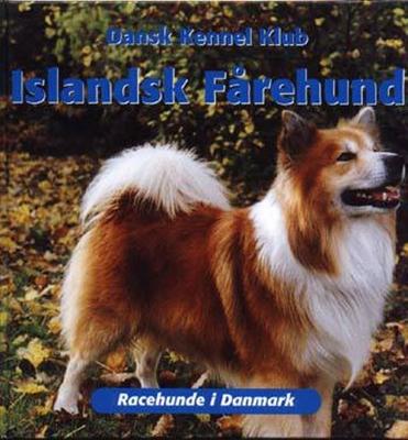 Islandsk Fårehund Dansk Kennel Klub 9788778572516