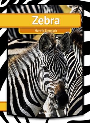Zebra Henrik Enemark 9788740602159