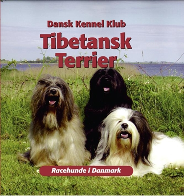 Tibetansk terrier Dansk Kennelklub 9788778577573