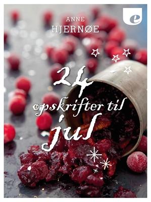24 opskrifter til jul Anne Hjernøe 9788740029963