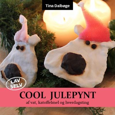 Cool julepynt Tina Dalbøge 9788799264643