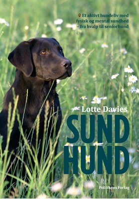 Sund Hund Lotte Davies 9788740039924