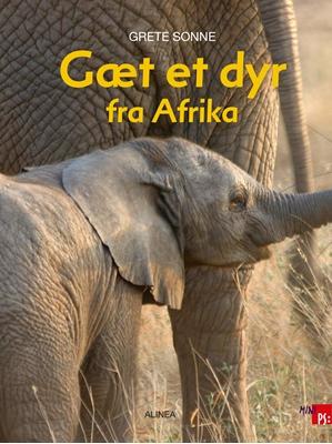 Gæt et dyr fra Afrika Grete Sonne 9788711769379