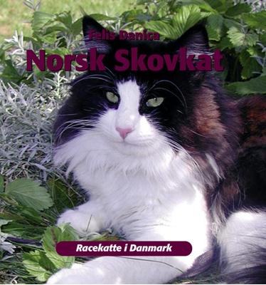 Norsk skovkat Felis Danica 9788778576316