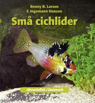 Små cichlider Benny B. Larsen 9788778576231