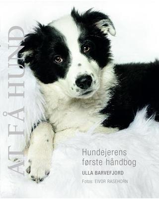 At få hund Ulla Barvefjord 9788778577290