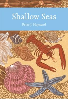 Shallow Seas Peter J. Hayward 9780007307302
