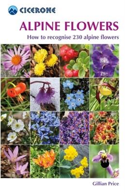 Alpine Flowers Gillian Price 9781852845650