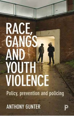 Race, Gangs and Youth Violence Anthony Gunter 9781447322870