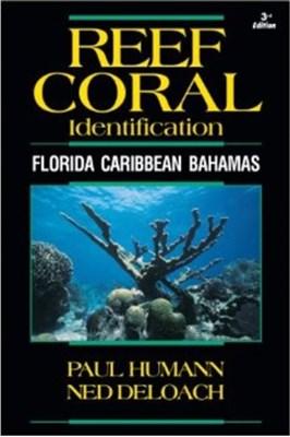 Reef Coral Identification Ned DeLoach, Paul Humann 9781878348548