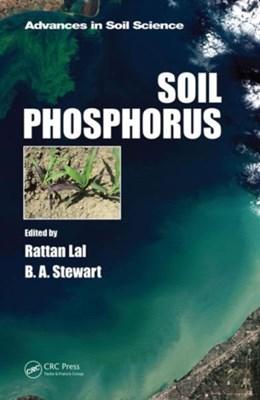Soil Phosphorus  9781482257847