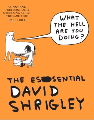 What The Hell Are You Doing?: The Essential David Shrigley David Shrigley 9781847678638