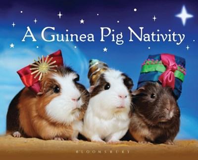 A Guinea Pig Nativity  9781408844793