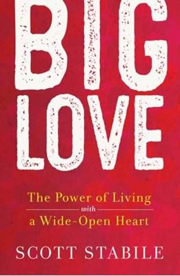 Big Love Scott Stabile 9781608684939