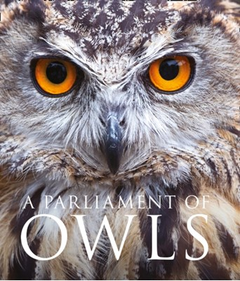 A Parliament of Owls Mike Unwin 9780008206703