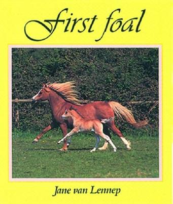First Foal Jane Van Lennep 9780851315324