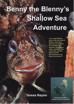 Benny the Blenny's Shallow Sea Adventure Teresa Naylor, Paul Naylor 9781909648005