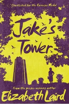 Jake's Tower Elizabeth Laird 9781509826711