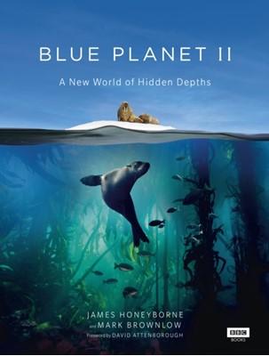 Blue Planet II James Honeyborne, Mark Brownlow 9781849909679