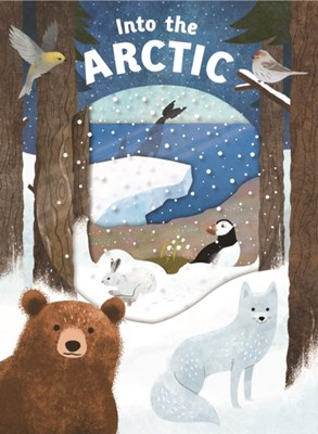 Into the Arctic Roger Priddy 9781783415731