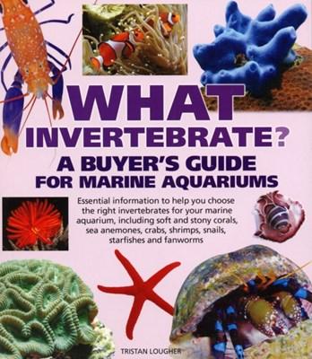 What Invertebrate? Tristan Lougher 9781842861790