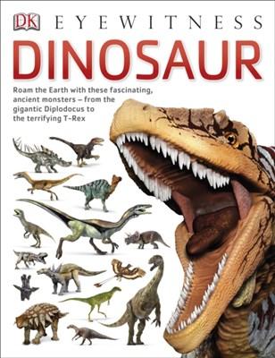 Dinosaur DK 9781409343714