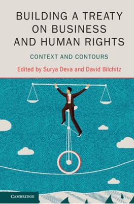 Building a Treaty on Business and Human Rights  9781107199118