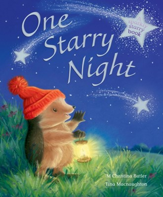 One Starry Night M. Christina Butler 9781848954830