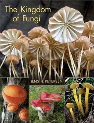 The Kingdom of Fungi Jens H. Petersen, Jens Petersen 9780691157542