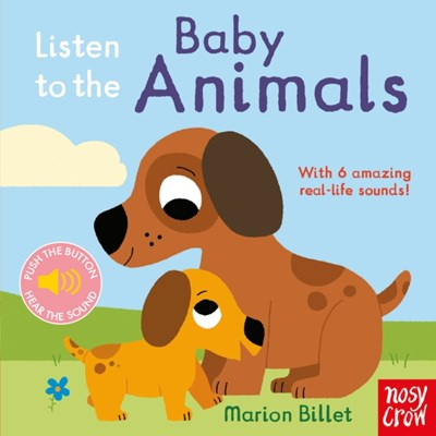 Listen to the Baby Animals  9780857638663