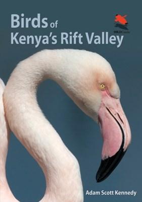 Birds of Kenya's Rift Valley Adam Scott Kennedy, Adam Kennedy 9780691159072