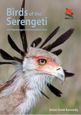 Birds of the Serengeti Adam Scott Kennedy, Adam Kennedy 9780691159102